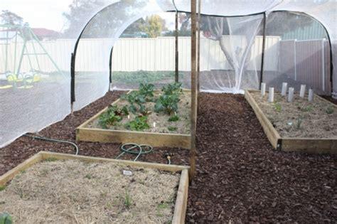 Vegetable Garden Netting Ag Pipe Hoop Vegetable Netting Our Family Projects