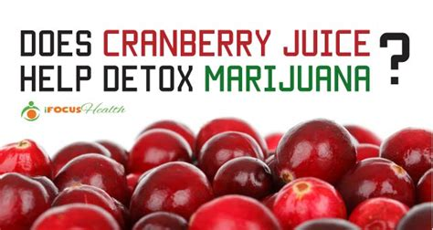 Does Detox Your by Can You Get Marijuana Out Of Your System By Juicing Detox