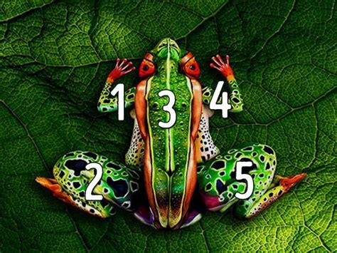 ilusiones opticas que ves ilusiones 243 pticas 191 qu 233 ves en las im 225 genes playbuzz