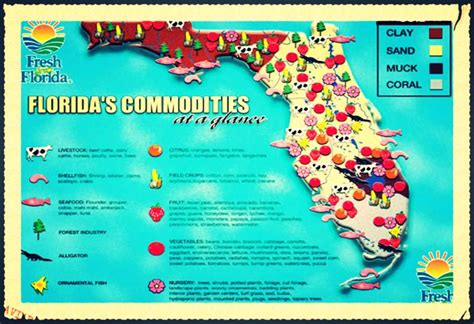 agricultural map of florida my florida notebook simplebooklet