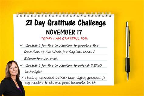 the gratitude journal a 21 day challenge to more gratitude deeper relationships and greater joy a life of gratitude 27 best gratitude challenge november 2016 images on