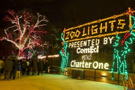 lincoln park zoo christmas lights lincoln park zoo lights ignite the holiday skies photos