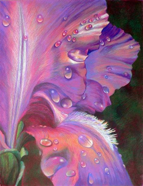 Beautiful Color Pencil Drawings Great Inspire Drawing Top Beautiful Color Images