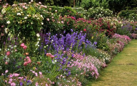 English Garden Timshala Gardens Garden Flower Borders