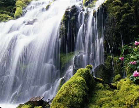 hidden waterfall wallpaper 938 wide screen wallpaper 55 best images about waterfall on pinterest