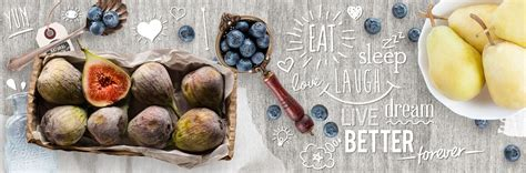 Ideal Bite Banner by Healthy Banner Www Pixshark Images Galleries With