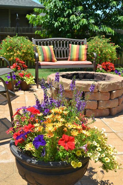 flower pot pit patio flowers the colors here and would to