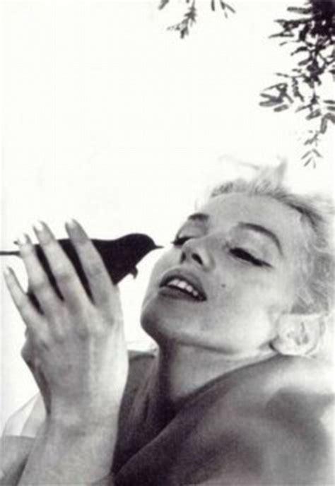 kelli garner saves pigeon from captivity as she films