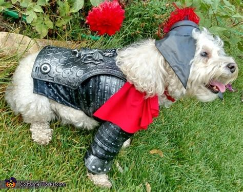 the puppy store st george george the slayer costume photo 3 3