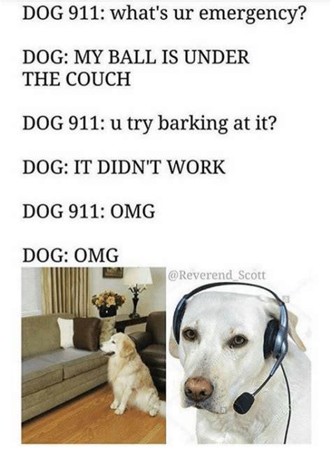 Dog 911 Meme