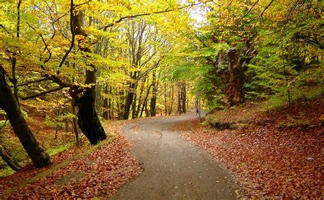 hardlopen  de herfst hoe versla je de regen