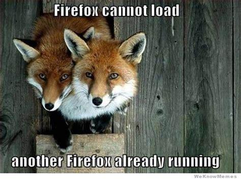 Fox Meme - firefox cannot load weknowmemes