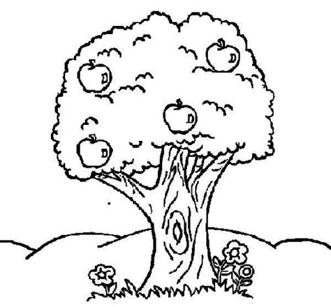 free coloring pages of trees and flowers cat in a tree coloring page archives kids coloring page