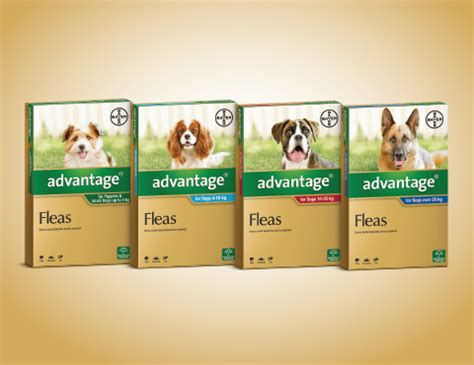 advantage for puppies advocate flea heartworm worm treatment for dogs advantage petcare