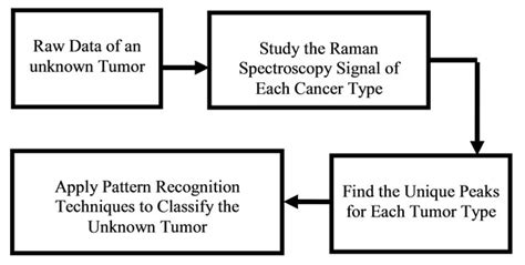 software engineering pattern recognition raman spectroscopy for human cancer tissue diagnosis a