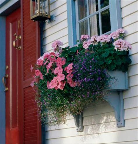 Cheap Window Box Planters by Window Box Planters Excellent How To Build A Window Box