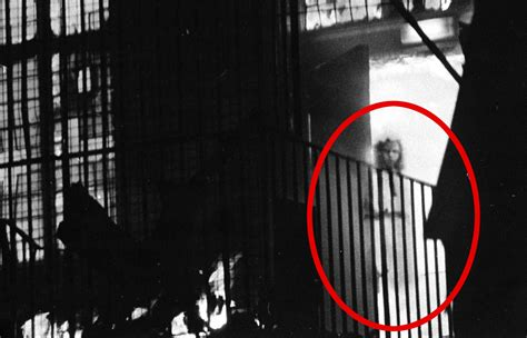 film ghost camera real ghost movie photos collection 2017