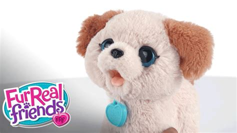 fur real furreal friends pax my poopin pup demo hasbro