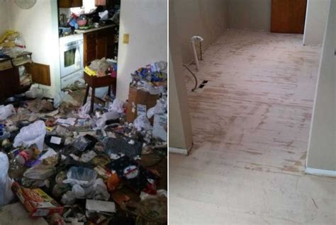 Hoarder House Before And After by Articles For 30 12 2016 187 Acidcow The One And Only