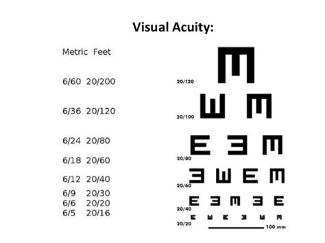 meaning of vas what is the meaning of 6 24 in eye vision and what is the