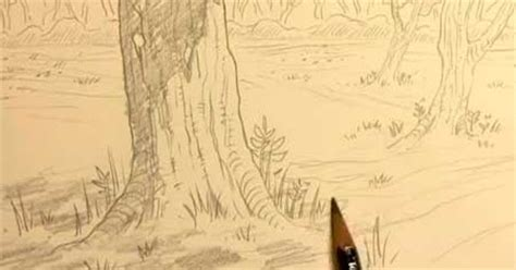 how to draw backgrounds how to draw forest backgrounds for lessons