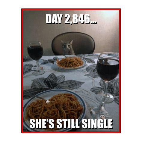 Shes Still The One by Day 284 B Shes Still Single Meme On Sizzle