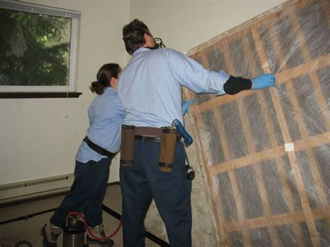 bed bug inspection bed bug inspection company birch run michigan jem bed