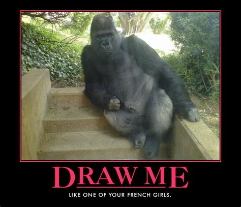 Funny Gorilla Meme - image 167786 draw me like one of your french girls