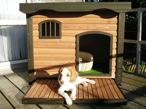 dog decorations for home show your dog some love buy him a warm wooden dog house