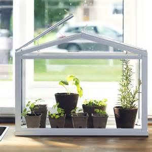 Windowsill Planters Indoor Greenhouses The Joy Of Plants