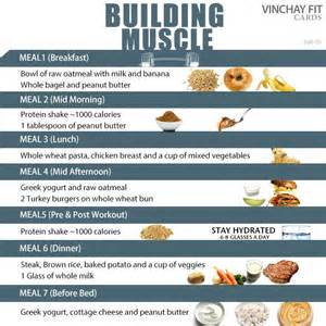 building meal plan fitness food diet plans diet and labs