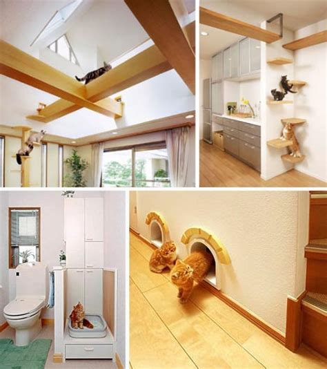 pet purrrfect the ultimate cat friendly interior design
