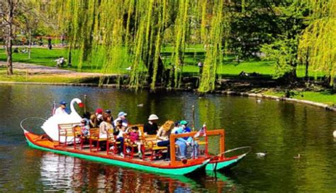 swan boats opening day 2018 boston guide hotels restaurants meetings things to