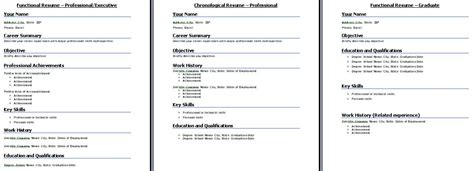 Job Interview Resume Format by Standard Resume Formats What Resume Format To Choose