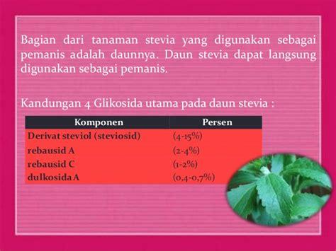 Pemanis Stevia stevia pemanis alami