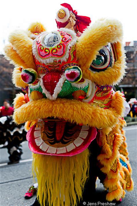 new year lions new year costume www pixshark