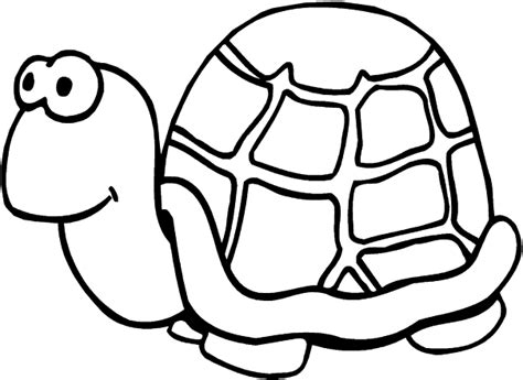 turtle cute animal pages printable for drawing