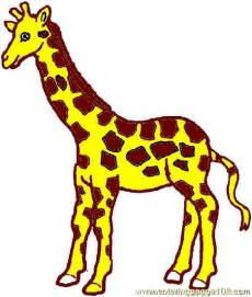 giraffe colors coloring pages giraffe coloring page 03 animals gt giraffe