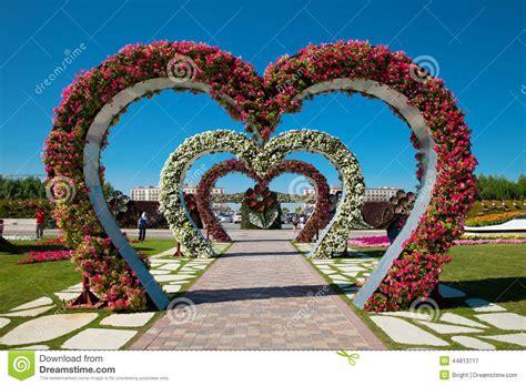 resultado de imagen para jardines de rosas rojas y azules jardines de flores dubai fotograf 237 a editorial imagen