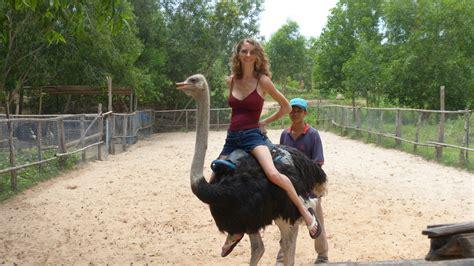 jen riding  ostrich pearce  earth