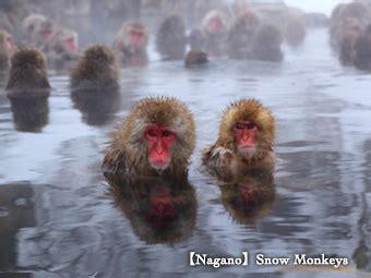 Nagita Listed japan ryokan and hotel association