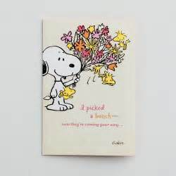 peanuts get well 12 boxed cards dayspring