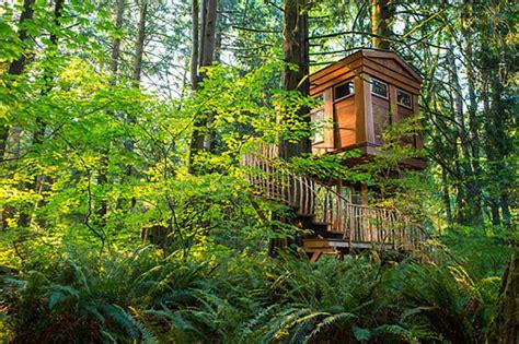 fairy tale tree house ideal for awakening your inner child