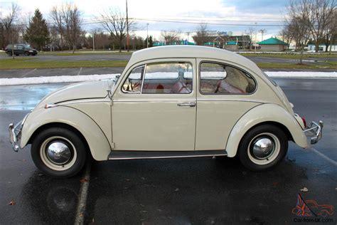 volkswagen beetle 1965 1965 volkswagen beetle stunning car