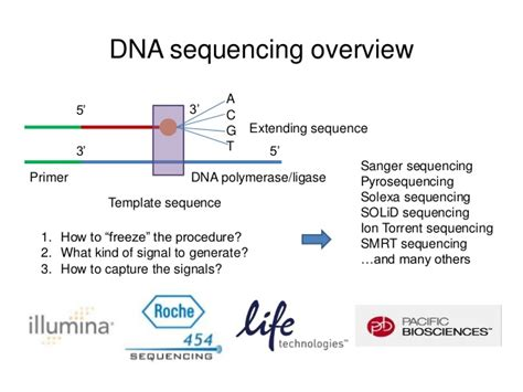 the templates for next generation sequencing are flash card next generation sequencing data format and visualization