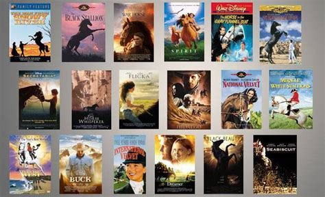 most famous movies best horse movies horse people riding life pinterest