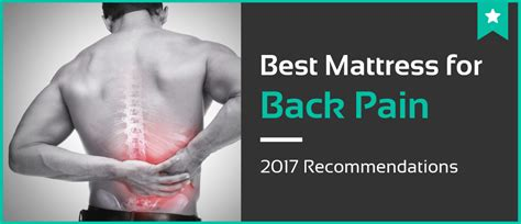 bed for back pain 5 best mattresses for back pain jan 2018 mattress