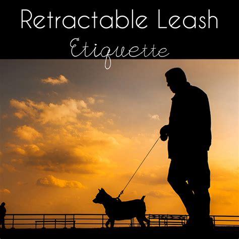 pug etiquette retractable leash dangers and etiquette this pug
