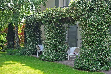 piccolo giardino giardini paghera dettagli di un piccolo giardino