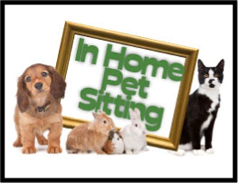 in home pet sitting gallery